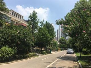 田家庵区公园街道淮河新城一期_4