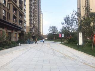 田家庵区安成镇新城悦府_32