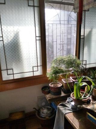 龙泉北村2室2厅98.65平米多层3楼简装房急售_7