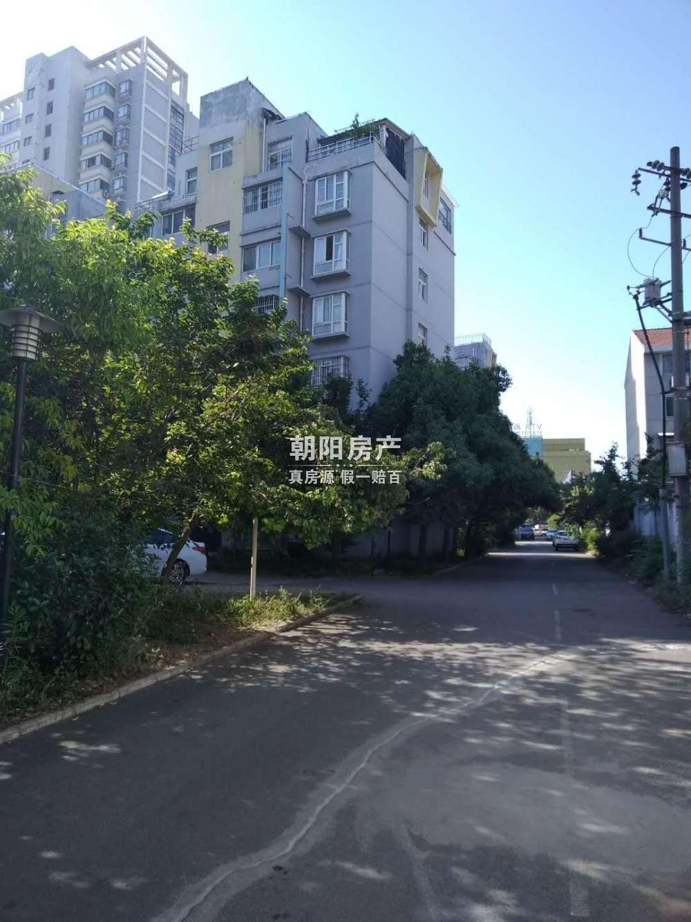 金徽华庭_11