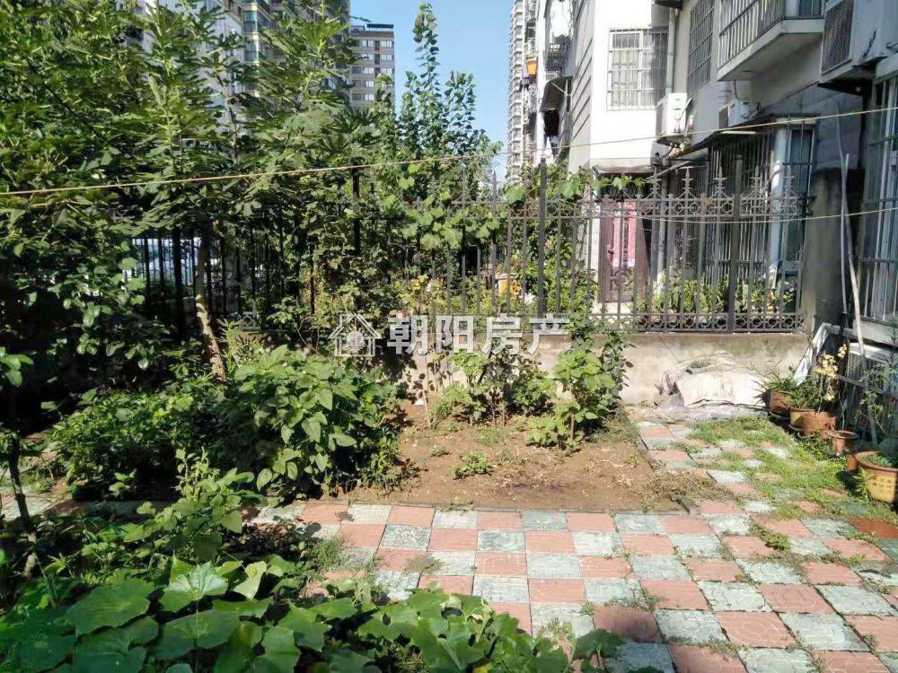 奥林花园一楼有院子