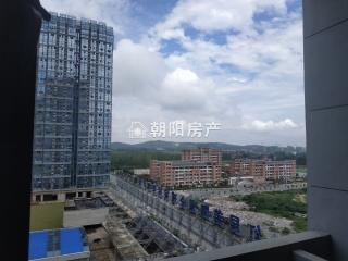 万茂中心毛坯公寓好房出售_11