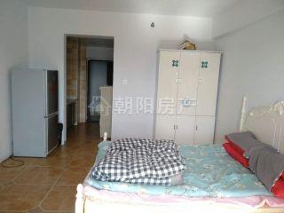 龙湖中心1室1厅精装公寓出租  朝西  _3