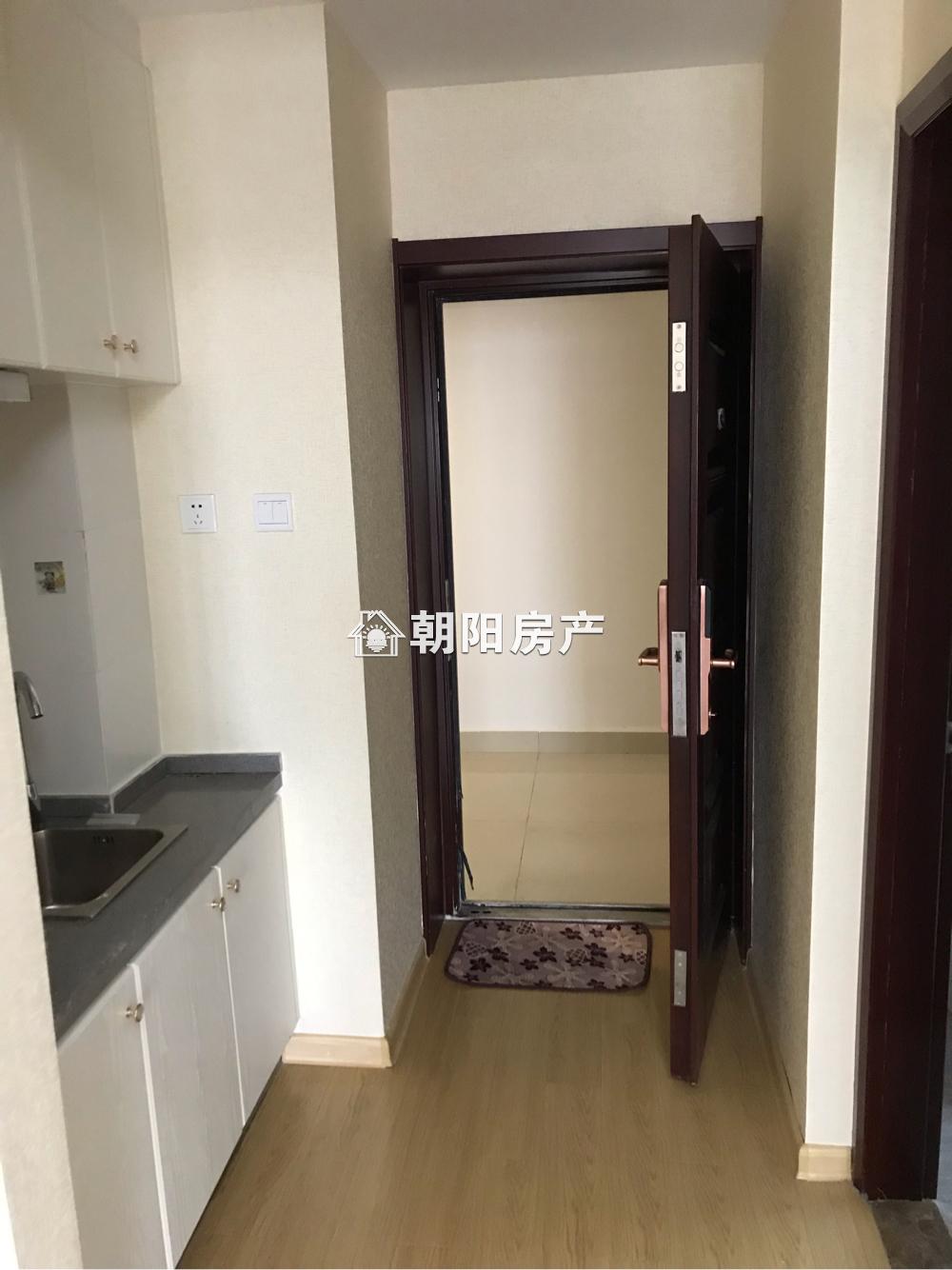 中环158精装公寓出租 拎包入住