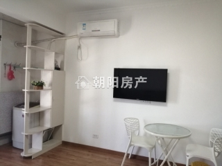 龙湖中心 精装公寓 诚心出租_1