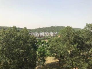 泉山湖公園里毛坯電梯洋房低價出售_13