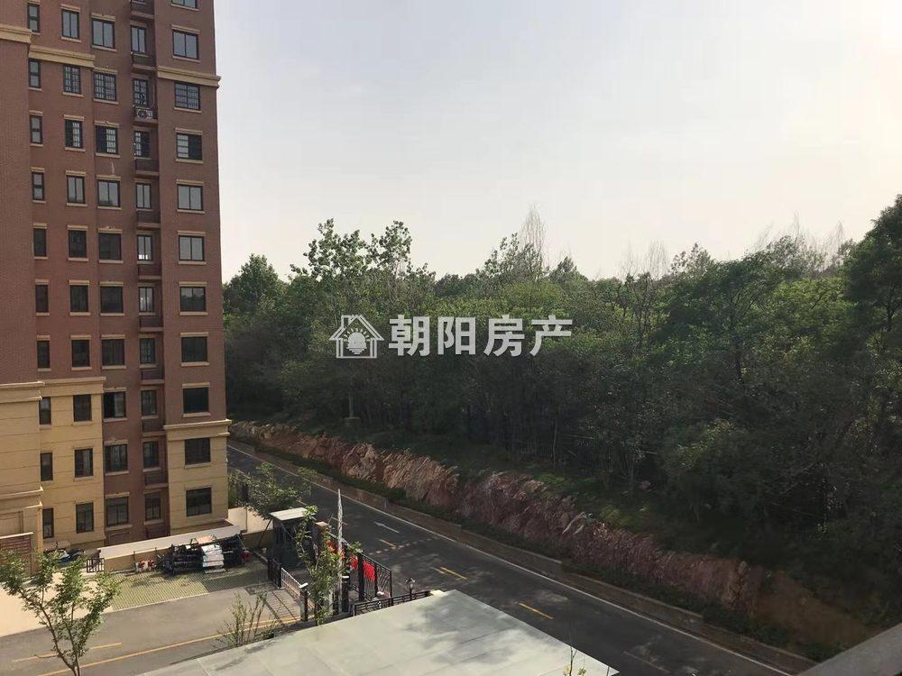 泉山湖公園里毛坯電梯洋房低價出售