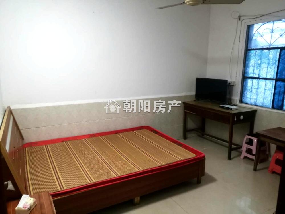 洞泉小区自建房两室一厅中装出租