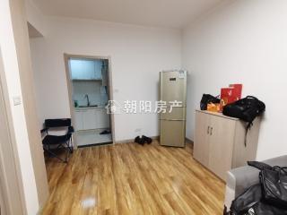 金地国际城二期阳光里 1室1厅精装公寓 出售_3